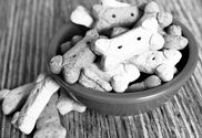 Manufacturer Buys Pet Treats Facility