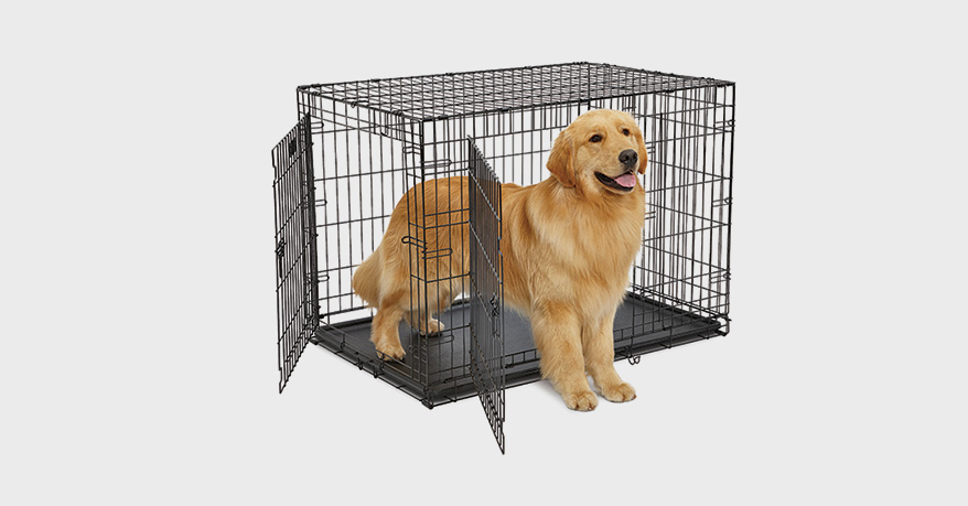 9 Secure, Stylish and Practical Quarters for Dogs - PetsPlusMag com