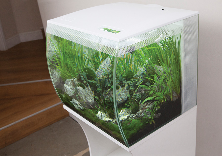 aquariums from nano to mammoth petsplusmag com