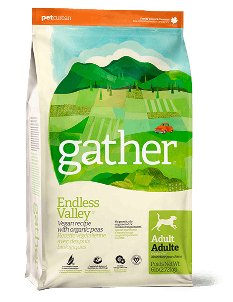 PETS gather endless valley dogs