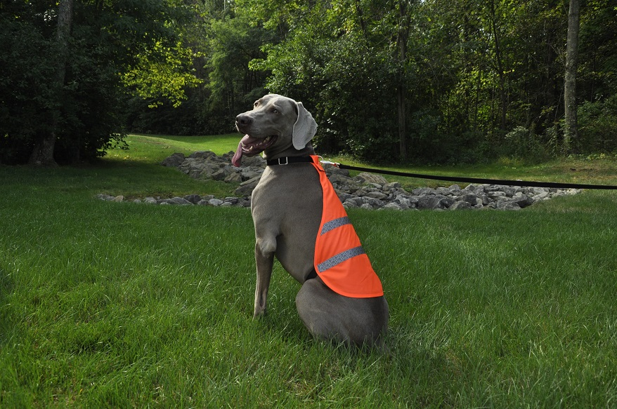 Reflective Safety Vest NOR
