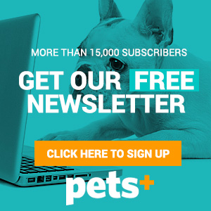 Sign up for FREE PETS+ bulletins