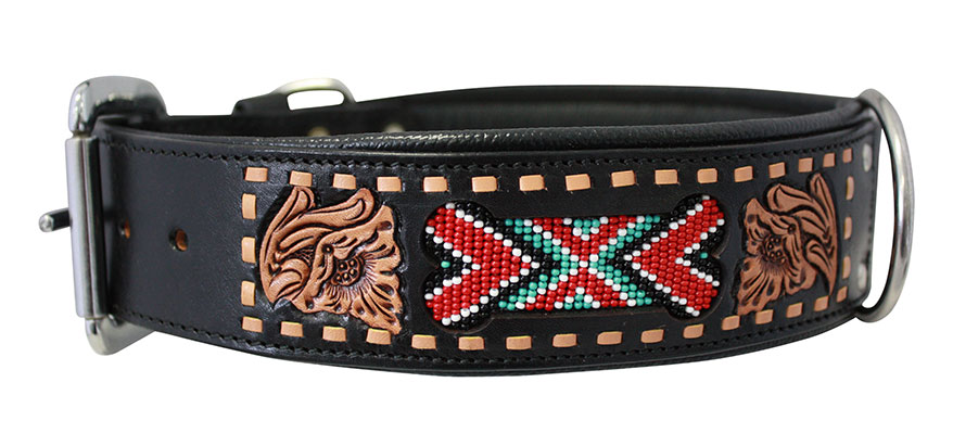 El Paso dog collar from Angel Pet Supplies