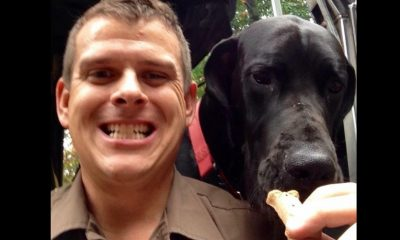 Dog-Loving UPS Driver's Facebook Page Becomes a Viral Sensation (Video)