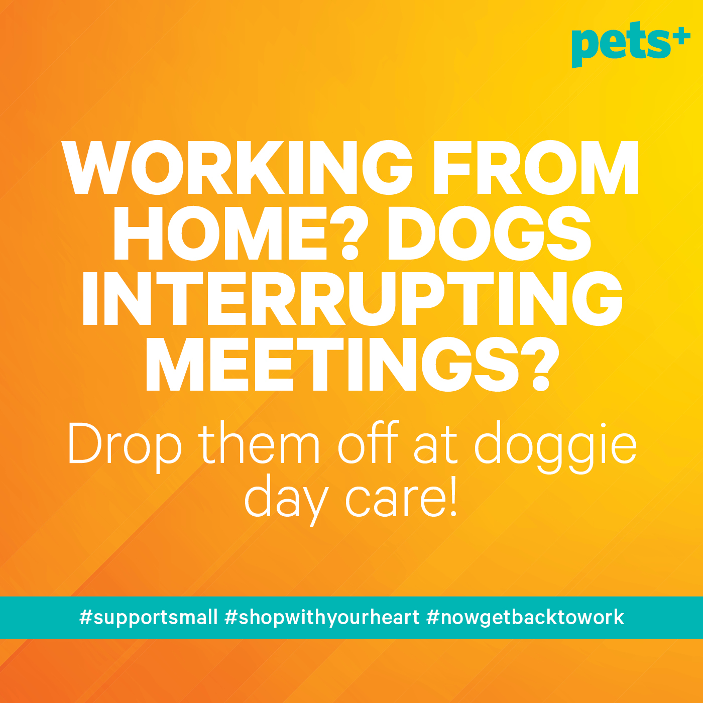 11 Social Media Graphics to Share With Your Pet Business Customers During the COVID-19 Pandemic
