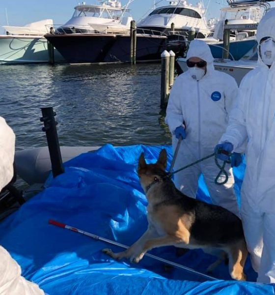Dog rescued from boat in Florida