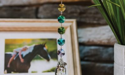 Crystal Rainbow Suncatcher Horse Memorial Keepsake from Pet Perennials