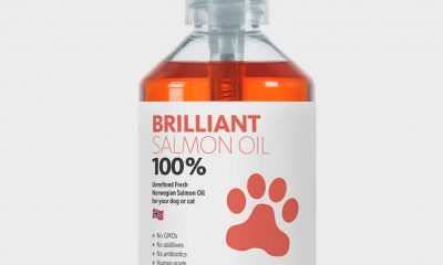 Brilliant 10oz salmon oil