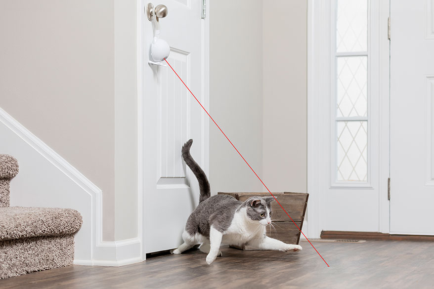 PETSAFE Dancing Dot Laser Cat Toy