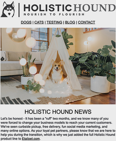 Holistic Hound newsletter
