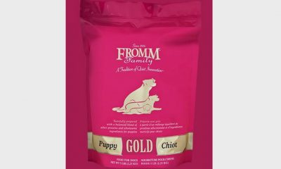 Fromm Puppy Gold regular and large-breed formula