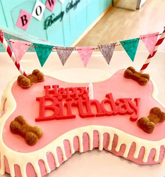 Bow Wow Beauty Shoppe birthday cake
