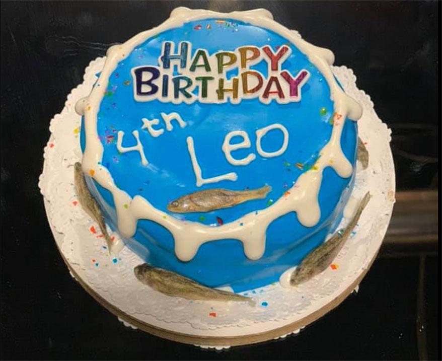 Dog Krazy, VA birthday cake