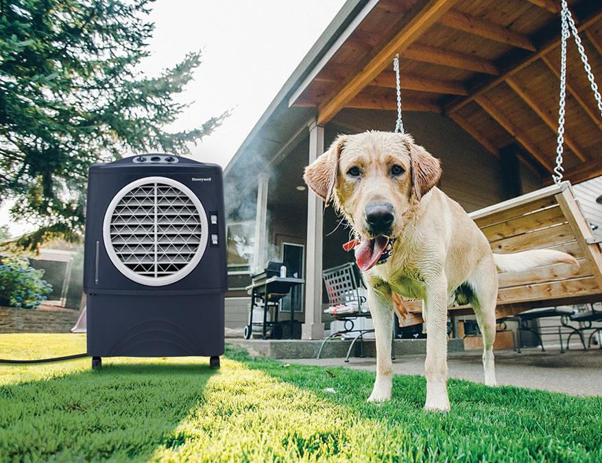 Honeywell Indoor Outdoor Portable Evaporative Air Cooler