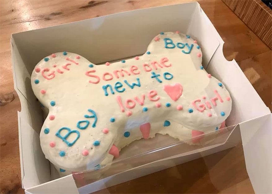Paws on Main, OH birthday cake