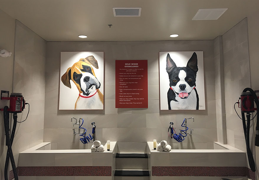 Riverfront Pets self-wash stations