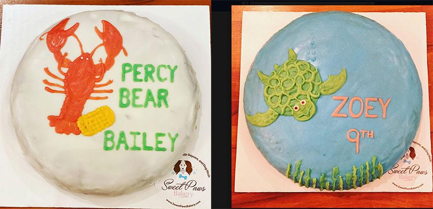 Sweet Paws Bakery, FL birthday cake