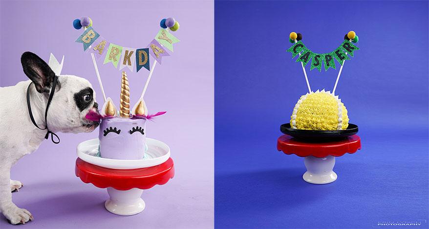 The Seattle Barkery, WA birthday cake