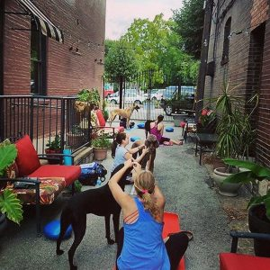 Four Muddy Paws Yoga on the Patio