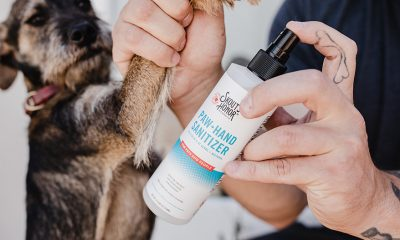 Skout's Honor Paw + Hand Sanitizer