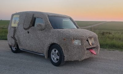 Podcast: Why This Doggie Day Care Owner Covered His Car in Shag Carpet