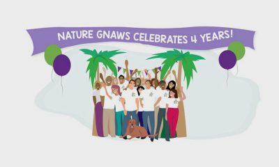 Nature Gnaws 4-year anniversary art