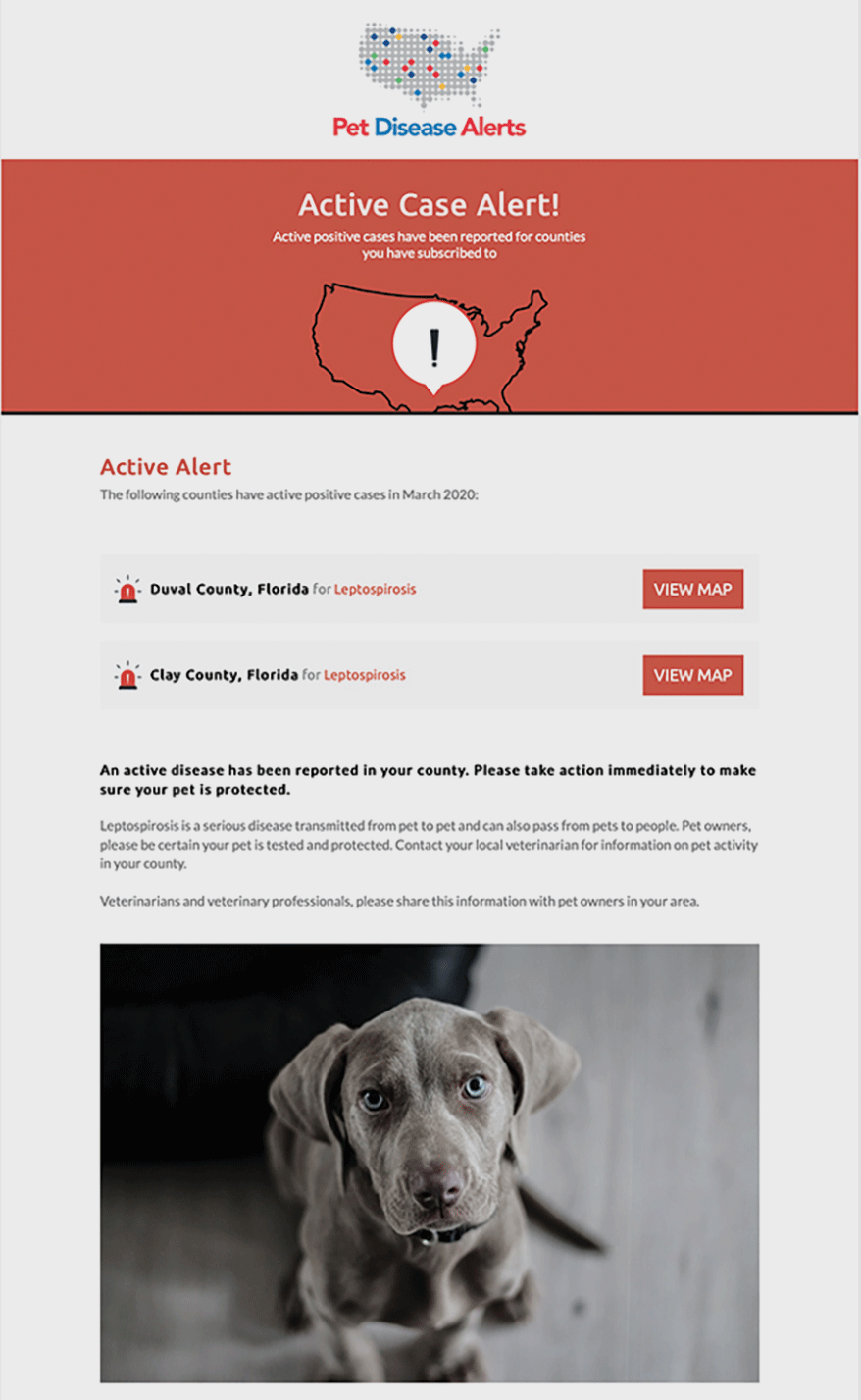 Pet Disease Alert Lepto Text Email Example