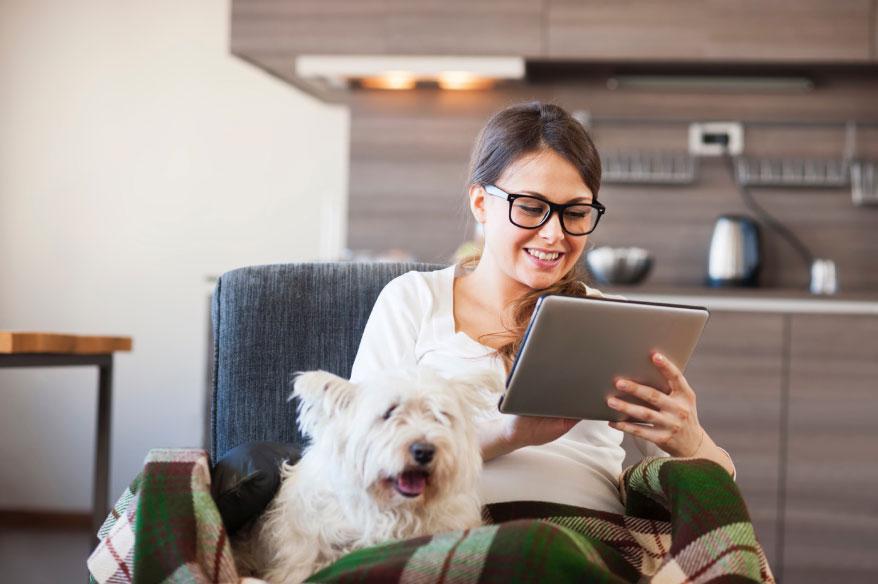 ANIMO Pet Behavior Monitor