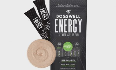 Dogswell Energy pack