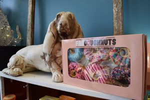 Just For Paws donuts
