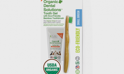 Pure and Natural NEW Bmboo Dental Kit