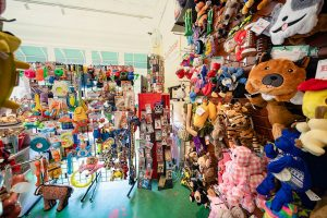 The-Dog-Store-interior-toys