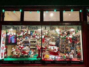 The-Dog-Store-window-display