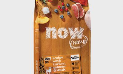 PETCUREAN NOW FRESH Grain Free Adult Dog Food Recipe