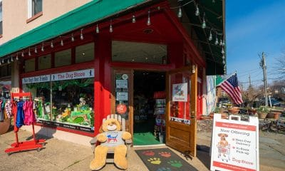 The-Dog-Store-exterior