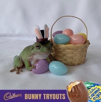 Cadbury from