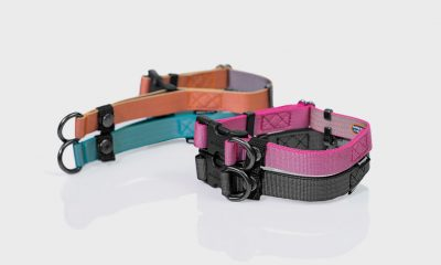 sleepypod Locking martingale collar