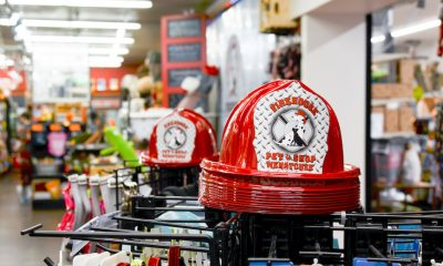 14 Photos That Show Why Firehouse Pet Shop Is One of America's Coolest Stores