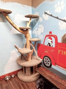 Firehouse-Pet-Shop-Search-and-Rescue-Room