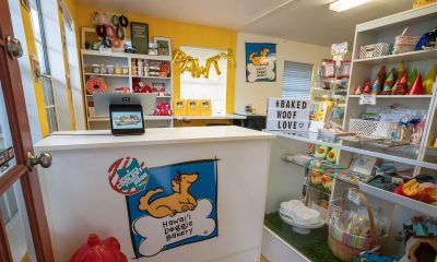 Hawaii-Doggie-Bakery-Interior
