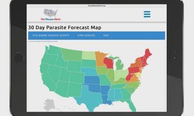 30-Day-Parasite-Forecast-Map---Computer