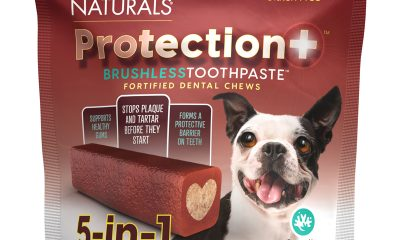 What's In the PETS+ June Sample Box?