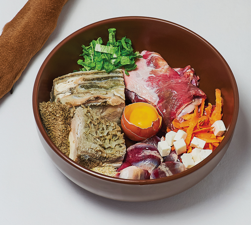 bowl-of-raw-pet-food
