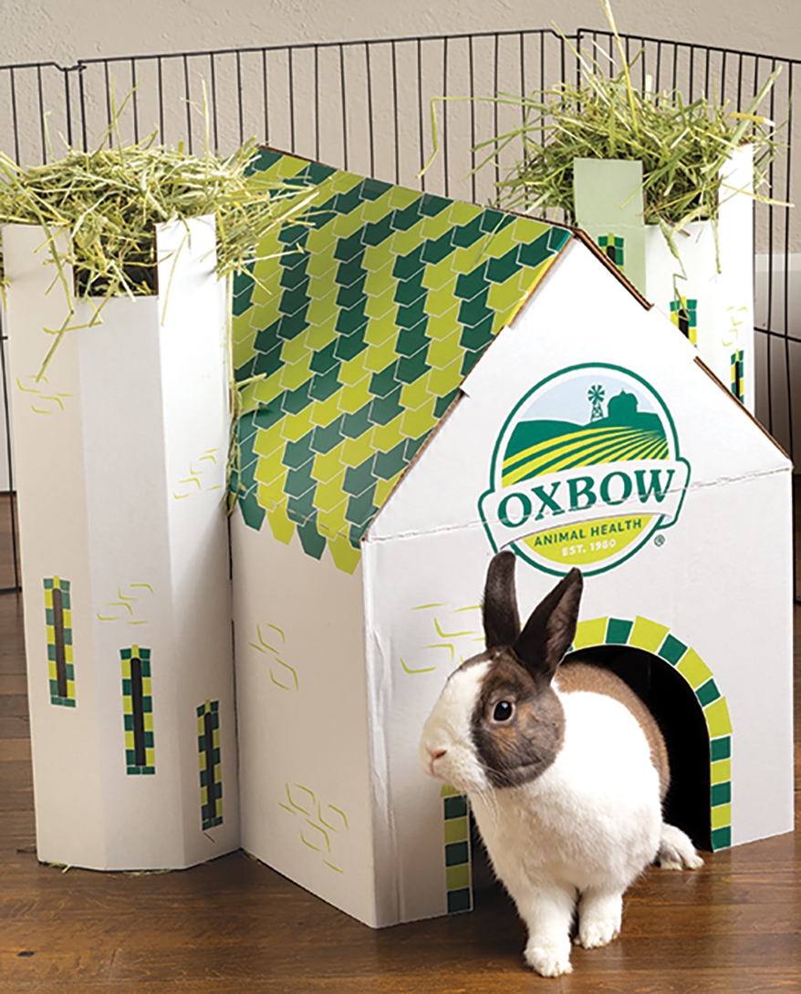 Oxbow-Animal-Health-Enriched-Life-Hideaway-Dream-Castle
