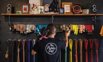 Take a Look at 9 of America's Coolest Pet Businesses (Photos)