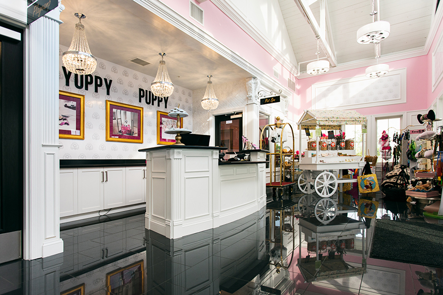 Yuppy Puppy lobby boutique
