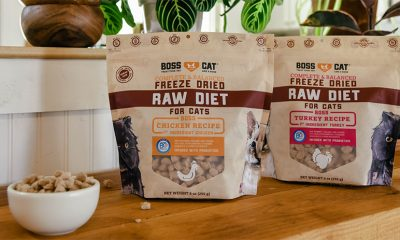 Boss Cat New Freeze Dried Raw Entrées For Cats