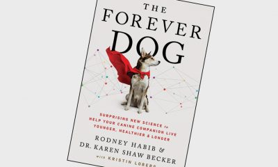 The-Forever-Dog-book